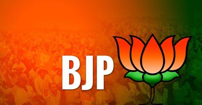 BJP bypol Lok Sabha election